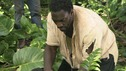 LOST - &quot;The 23rd Psalm&quot; - Mr. Eko interrogates Charlie about the Virgin Mary statue, Claire begins to lose faith in Charlie when she discovers his secret, and Jack is an interested observer when Kate gives the recovering Sawyer a much-needed haircut, on &quot;Lost,&quot; WEDNESDAY, JANUARY 11 (9:00-10:00 p.m., ET), on the ABC Television Network. (ABC/MARIO PEREZ) DOMINIC MONAGHAN, ADEWALE AKINNUOYE-AGBAJE
