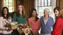 "DESPERATE HOUSEWIVES - ""Sunday"" - Kathryn Mayfair is unable to keep some of her secrets from the women of Wisteria Lane. APRIL 13 (9:00-10:02 p.m., ET) on the ABC Television Network.  (ABC/DANNY FELD) TERI HATCHER, MARCIA CROSS, EVA LONGORIA PARKER, FELICITY HUFFMAN, DANA DELANY"