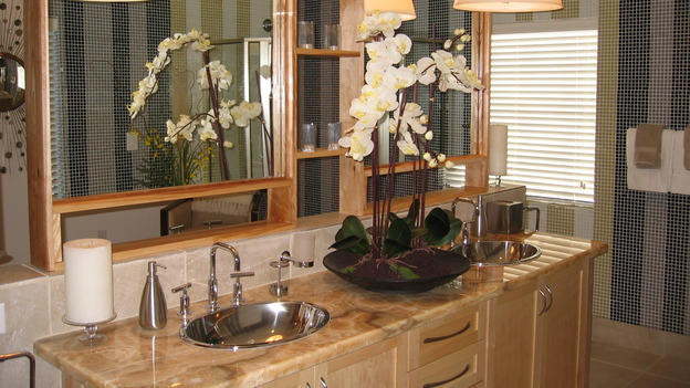 EXTREME MAKEOVER HOME EDITION - &quot;Riggins Family,&quot; -  Bathrooms, on &quot;Extreme Makeover Home Edition,&quot; Sunday, January 21th on the ABC Television Network.