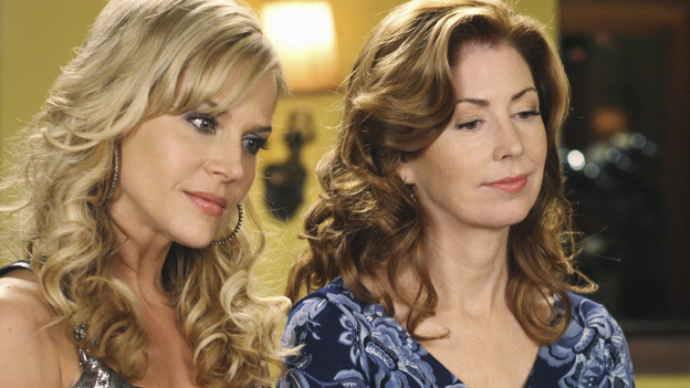 "DESPERATE HOUSEWIVES - ""Lovely"" - Susan causes quite a stir when she invites a former stripper into her home on ABC's ""Desperate Housewives,"" SUNDAY, FEBRUARY 21 (9:00-10:01 p.m., ET). Former exotic dancer Robin will have a profound effect on Susan's friends -- with three teenage boys at home, Lynette will keep a watchful eye; Bree picks up a few tricks to engage Orson; Gaby looks for help with troublesome niece Ana; and Katherine will find a friendly companion. (ABC/RON TOM)JULIE BENZ, DANA DELANY"