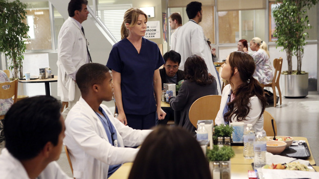 "GREY'S ANATOMY - ""Going Going Gone"" - The doctors of Seattle Grace are faced with the aftermath of last season's plane crash. As they try to move on with their lives, they must learn to adapt to the changes, cope with their losses and move forward with their relationships and careers, on the ninth-season premiere of ""Grey's Anatomy,"" THURSDAY, SEPTEMBER 27 (9:00-10:02 p.m., ET) on the ABC Television Network. (ABC/DANNY FELD)GAIUS CHARLES, ELLEN POMPEO, CAMILLA LUDDINGTON"
