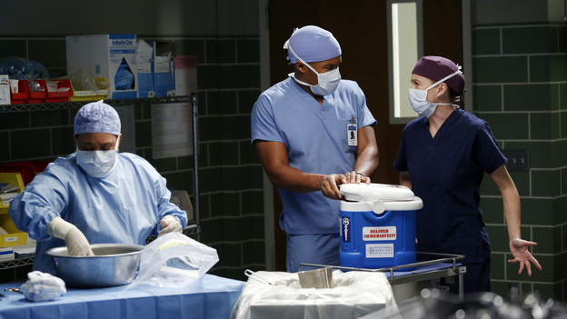 GREY'S ANATOMY - &quot;Walking on a Dream&quot; - The Seattle Grace doctors are on edge when a new medical professional enters the hospital; Arizona struggles with the emotional and physical pain of a phantom limb; and while battling pregnancy hormones, an overly-emotional Meredith is confronted with her worst fear, on &quot;Grey's Anatomy,&quot; THURSDAY, JANUARY 24 (9:00-10:02 p.m., ET) on the ABC Television Network. (ABC/KELSEY MCNEAL)CHANDRA WILSON, GAIUS CHARLES, ELLEN POMPEO