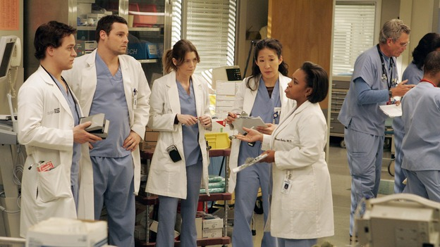 "GREY'S ANATOMY - ""Walk on Water"" - Beginning February 8, Grey's Anatomy enters a three-episode story arc that will challenge the interns of Seattle Grace -- and ""Grey's"" fans as well -- like never before. ""Walk on Water"" airs THURSDAY, FEBRUARY 8 (9:00-10:00 p.m., ET) on the ABC Television Network. Elizabeth Reaser (Independent Spirit Award winner for ""Sweet Land"") guest stars as a patient over multiple episodes. (ABC/VIVIAN ZINK)T.R. KNIGHT, JUSTIN CHAMBERS, ELLEN POMPEO, SANDRA OH, CHANDRA WILSON"