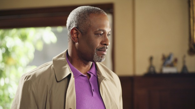 "GREY'S ANATOMY - ""Staring at the Sun"" - The O'Malley Family visits George at the hospital, Meredith is determined to have a more positive outlook on life, Derek and Addison strive for a civil relationship, and Richard endeavors to reunite with his wife, Adele, on ""Grey's Anatomy,"" THURSDAY, NOVEMBER 16 (9:00-10:01 p.m., ET) on the ABC Television Network. (ABC/KAREN NEAL)JAMES PICKENS, JR."