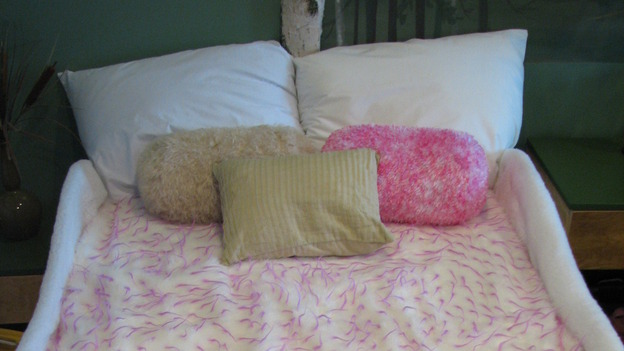 "EXTREME MAKEOVER HOME EDITION - ""Rogers Family,"" - Girl's Bedroom Detail, on ""Extreme Makeover Home Edition,"" Sunday, September 24th on the ABC Television Network."