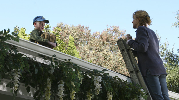 DESPERATE HOUSEWIVES - &quot;YOUR FAULT&quot; (ABC/SCOTT GARFIELD) ZANE HUETT, FELICITY HUFFMAN