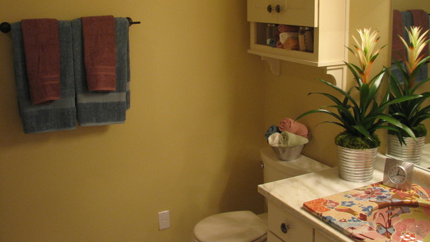 "EXTREME MAKEOVER HOME EDITION - ""Tipton-Smith Family,"" - Bathroom, on ""Extreme Makeover Home Edition,"" Sunday, March 11th on the ABC Television Network."