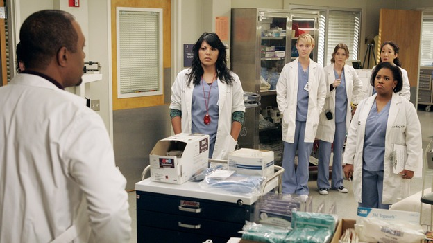 GREY'S ANATOMY - &quot;Walk on Water&quot; - Beginning February 8, Grey's Anatomy enters a three-episode story arc that will challenge the interns of Seattle Grace -- and &quot;Grey's&quot; fans as well -- like never before. &quot;Walk on Water&quot; airs THURSDAY, FEBRUARY 8 (9:00-10:00 p.m., ET) on the ABC Television Network. Elizabeth Reaser (Independent Spirit Award winner for &quot;Sweet Land&quot;) guest stars as a patient over multiple episodes. (ABC/VIVIAN ZINK)JAMES PICKENS, JR., SARA RAMIREZ, KATHERINE HEIGL, ELLEN POMPEO, SANDRA OH, CHANDRA WILSON