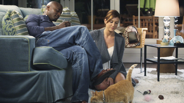 "PRIVATE PRACTICE - ""Slip Slidin' Away"" - The doctors venture into controversial territory when an unexpected new hire at Pacific Wellcare causes Naomi to struggle with the idea of genetically designing babies and Violet makes a sudden decision to try electric shock therapy on a patient. Meanwhile Addison somehow finds herself alone and with a cat, on ""Private Practice,"" THURSDAY, NOVEMBER 5 (10:01-11:00 p.m., ET) on the ABC Television Network. (ABC/DANNY FELD)TAYE DIGGS, KATE WALSH"