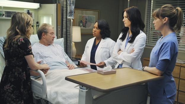 Grey's Anatomy Anatomía 7x14