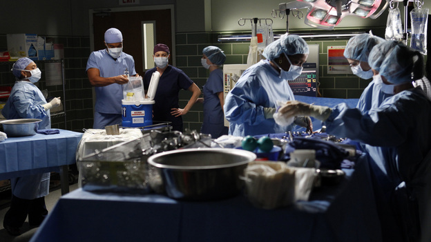 "GREY'S ANATOMY - ""Walking on a Dream"" - The Seattle Grace doctors are on edge when a new medical professional enters the hospital; Arizona struggles with the emotional and physical pain of a phantom limb; and while battling pregnancy hormones, an overly-emotional Meredith is confronted with her worst fear, on ""Grey's Anatomy,"" THURSDAY, JANUARY 24 (9:00-10:02 p.m., ET) on the ABC Television Network. (ABC/KELSEY MCNEAL)CHANDRA WILSON, GAIUS CHARLES, ELLEN POMPEO"