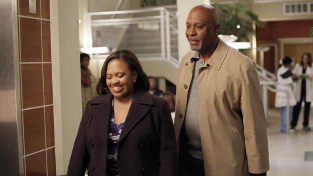 Always ThereThere's never been anything romantic between Richard Webber and Miranda Bailey, but the affection these two share for each other is obvious. Whether it's through a heartfelt chat or a knowing look, these two always keep an eye on those they teach as well as each other.
