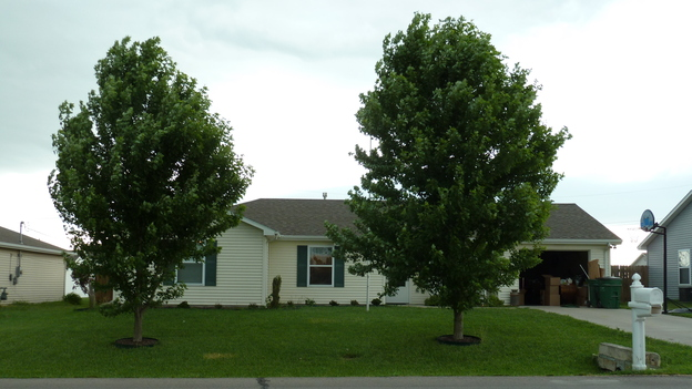 "EXTREME MAKEOVER HOME EDITION - ""Hill Family,"" - Before Picture,            on   ""Extreme Makeover Home Edition,"" Friday, November 4th               (8:00-10:00   p.m.  ET/PT) on the ABC   Television Network."