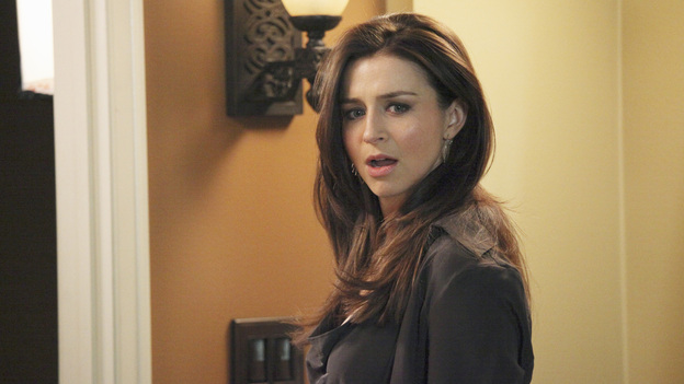"PRIVATE PRACTICE - ""Good Fries are Hard to Come By"" - Amelia, now sober for more than a year and on the mend emotionally, goes on a series of disastrous blind dates set up by the other doctors at the practice. After vowing to be alone indefinitely, she teams up with James on a medical procedure, which leads to dinner -- and the dinner leads to something completely unexpected -- on ""Private Practice,"" TUESDAY, JANUARY 8 (10:00-11:00 p.m., ET) on the ABC Television Network. (ABC/RICHARD CARTWRIGHT)CATERINA SCORSONE"